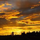Arizona Sunset by lorilee