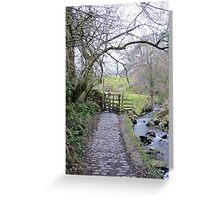 Tranquil scene Greeting Card
