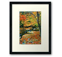 AUTUMN,LITTLE RIVER Framed Print