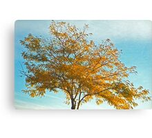Alone But Golden Canvas Print