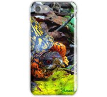 Colorful Box Turtle iPhone Case/Skin
