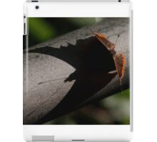 Red Admiral  shadow  iPad Case/Skin