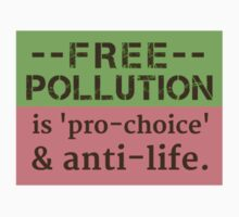 Pollution Should Not Be Free.  What's Right is Right. by gnuber