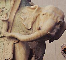 Bernini's Elephant by Alexandra Lavizzari