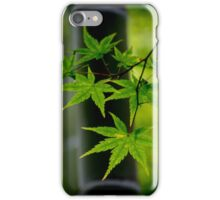 Japanese maple and bamboo iPhone Case/Skin