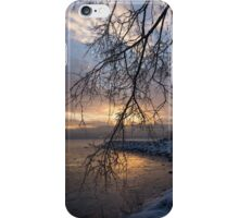 A Curtain of Frozen Branches - Ice Storm Sunrise iPhone Case/Skin