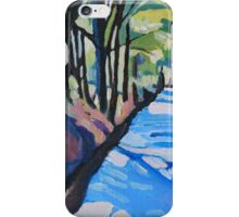 Dylan's Path  iPhone Case/Skin