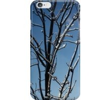 Mother Nature's Christmas Decorations - Icy Twig Jewels iPhone Case/Skin