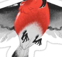 Bullfinch bird Sticker