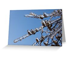 Mother Nature's Christmas Decorations – Glistening Twigs and Pine Cones Greeting Card