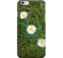 A HAT TRICK - 3 DAISIES IN A ROW iPhone Case/Skin