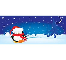 cute little xmas penguin Photographic Print