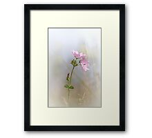 Life is beautiful II ... (new edit and crop) Framed Print