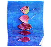 Autumn Leaves on Blue Vintage Table Poster