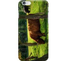 The grass is greener under the trees iPhone Case/Skin