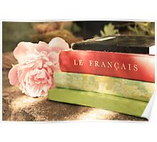 Black Green Red Vintage French Books and Pink Flower Poster