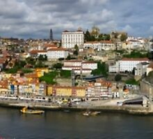 Porto Panorama by MichaelJP