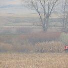 Foggy Morning Bird Hunt by Betty  Town Duncan