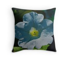 Heart of the Matter Throw Pillow