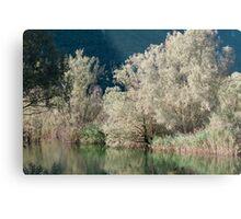 landscape lake Metal Print