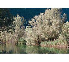 landscape lake Photographic Print