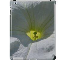 Inside iPad Case/Skin
