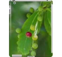berries in the forest iPad Case/Skin