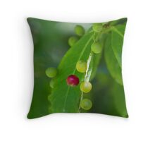 berries in the forest Throw Pillow