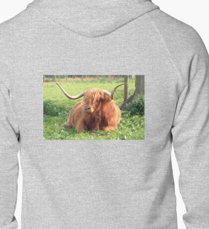 Heilan Coo T-Shirt