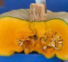 pumpkin in the garden by spetenfia