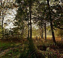 Preston Park, Stockton on Tees by Dave Hudspeth