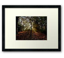 Preston Park, Misty Morning Framed Print