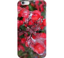 Holly Berries ! iPhone Case/Skin