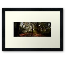 Misty Morning in Preston Park Framed Print
