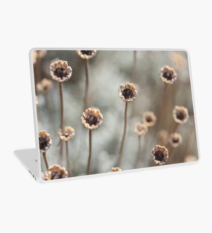 Dried out daisies - 2016 Laptop Skin