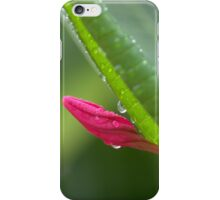 Rainy bud iPhone Case/Skin