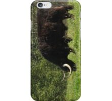 Chewing the Cud iPhone Case/Skin