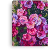A bush of small pink roses Canvas Print