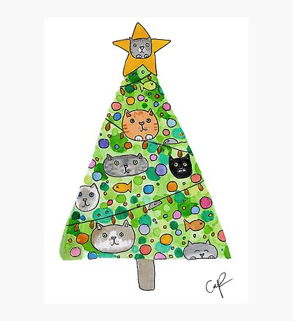 Christmas for the Cat Lovers Photographic Print