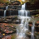 Fallen Leaves On The Nameless Waterfall by Gene Walls