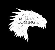 The darkness is coming by LiRoVi
