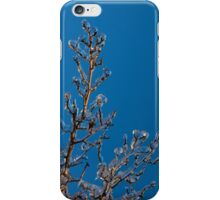 Mother Nature's Christmas Decorations - Ice Jewelry iPhone Case/Skin