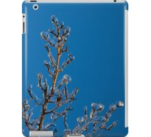 Mother Nature's Christmas Decorations - Ice Jewelry iPad Case/Skin