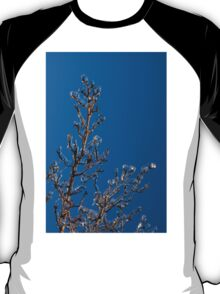 Mother Nature's Christmas Decorations - Ice Jewelry T-Shirt