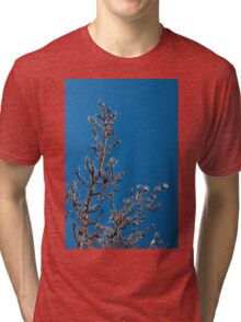 Mother Nature's Christmas Decorations - Ice Jewelry Tri-blend T-Shirt