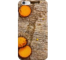 Winnie the pooh iPhone Case/Skin