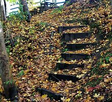 For Autumn Decked by Francis Drake