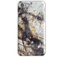 Entanglement iPhone Case/Skin