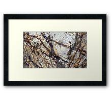 Entanglement Framed Print