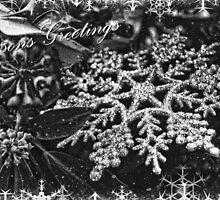 Seasons Greetings  by Selina Ryles